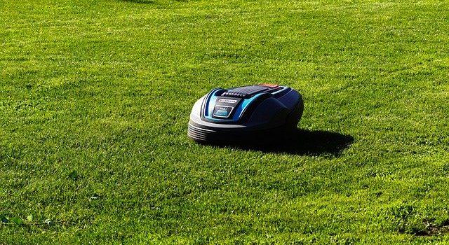 Besten Rasenmäher Robtor 2020 mit Einkaufsführer